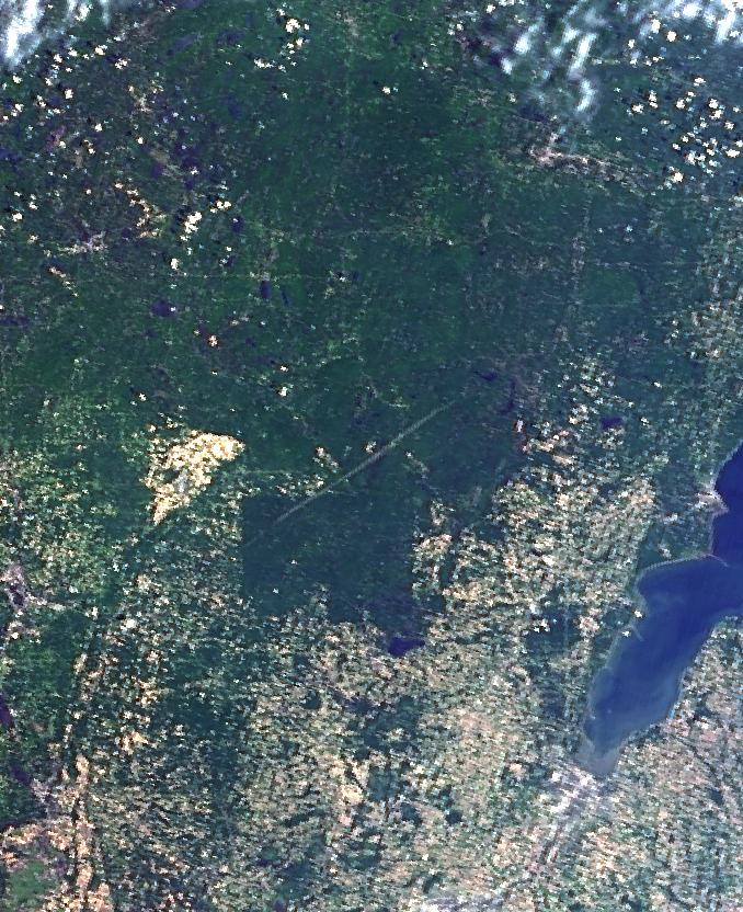 Terra MODIS true-color image