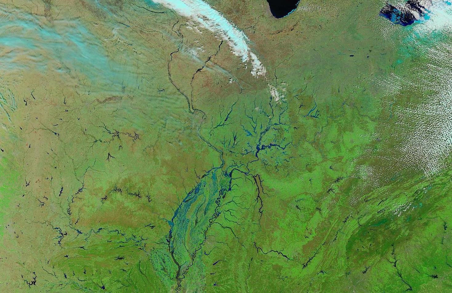 MODIS false color image