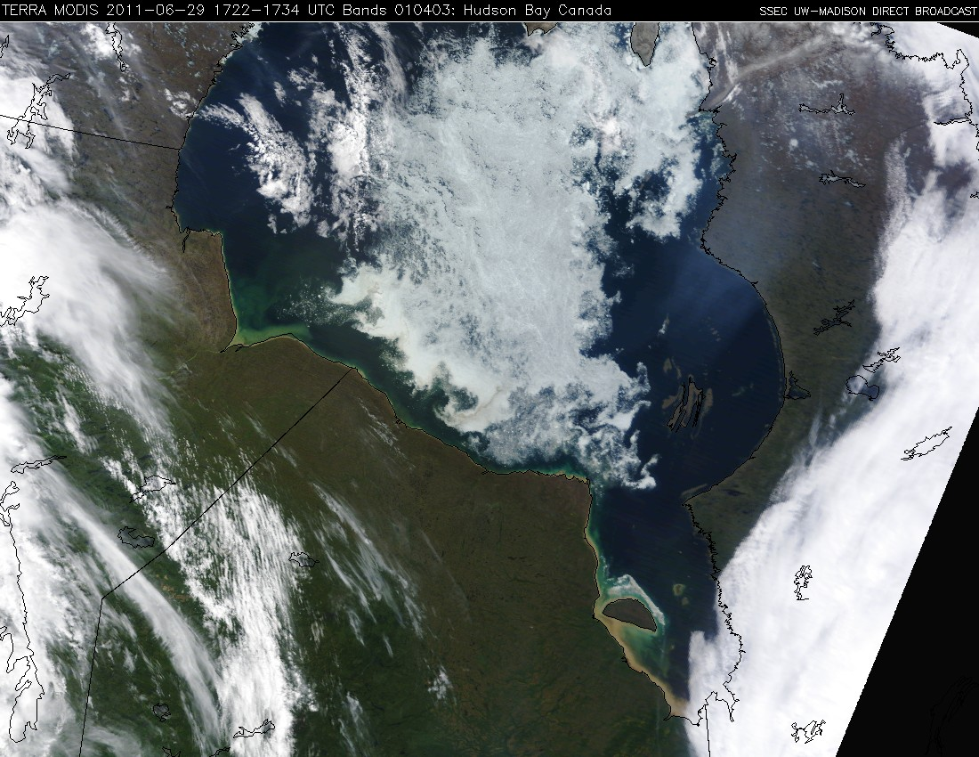 MODIS true color RGB image